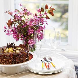Chocolate cake 1 by Elena Elisseeva