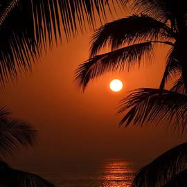 Sunset by Natasha Marco