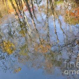 Krista Hott - Monet Autumn