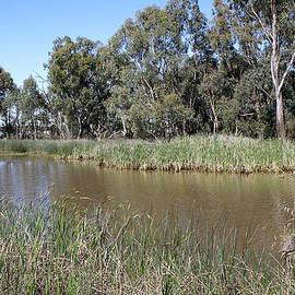 Carole-Anne Fooks - Kings Billabong Mildura Australia
