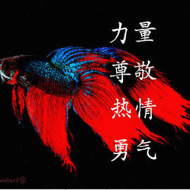 4 Virtues Siamese Fighting Fish #1