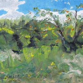 Wild Apples by Francois Fournier