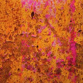 Mark Weaver - Rust And Metal Series