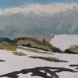 Francois Fournier - The white hills