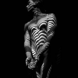 5812 Zebra Striped Male Body In Black And White by Chris Maher