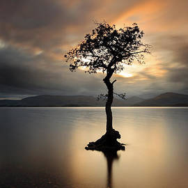 Loch Lomond Sunset by Grant Glendinning