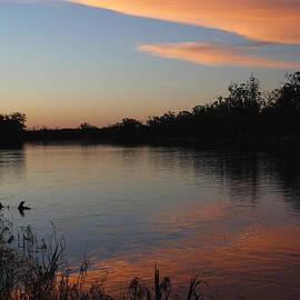 Carole-Anne Fooks - River Murray Sunset Series 1