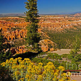 739p Bryce Canyon National Park by NightVisions