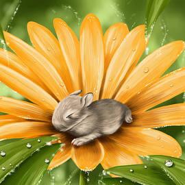 Veronica Minozzi - A beautiful flower