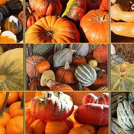 Dora Sofia Caputo Photographic Design and Fine Art - A Bountiful Harvest