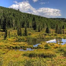 A Grand Mesa view by Bob Hislop