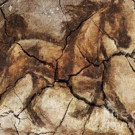 Dragica  Micki Fortuna - A Horse - Cave Art