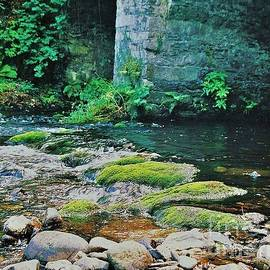 The  River Avoca, County Wicklow, Ireland  by Marcus Dagan