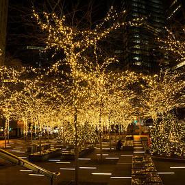 A Little Golden Garden in the Heart of Manhattan New York City