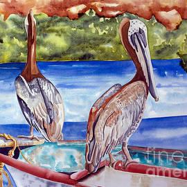 A Pair Of Pelicans by Kandyce Waltensperger