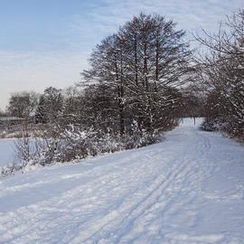 Georgia Mizuleva - A Pale Blue Snowday