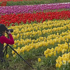 Nick  Boren - A Photographers Paradise
