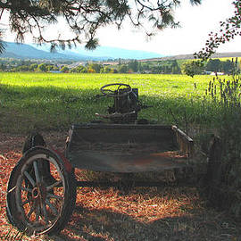 Final Resting Place - Vintage Tractor Wagon as Art - Nature and Weathered Wagon Art by Brooks Garten Hauschild
