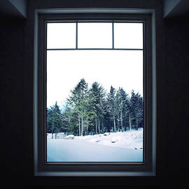 A Room With A View by Natasha Marco