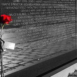 Ross Henton - A Rose for Vietnam