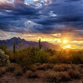 A Sonoran Desert Sunrise by Saija  Lehtonen