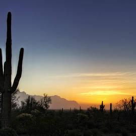 A Sonoran Sunrise  by Saija  Lehtonen