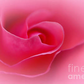A Touch of Softness by Kaye Menner