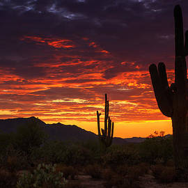 Saija  Lehtonen - A True Southwest Sunset