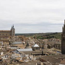 A View From The Iglesia De San Ildefonso  by Lorraine Devon Wilke