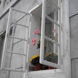 Lisa Kilby - A Welcoming Window