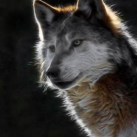 Ernie Echols - A Wolf 2 Digital Art