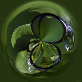 Jordan Blackstone - A World Within A Drop Of  Rain - Orb Art