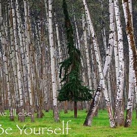 Mary Lee Dereske - Above All Else Be Yourself