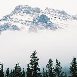 Rodney Troch - Above the Fog