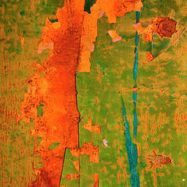 Mark Weaver - Absrtract - Rust And Metal Series