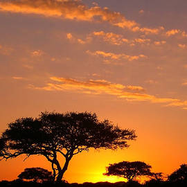 African Sunset by Sebastian Musial