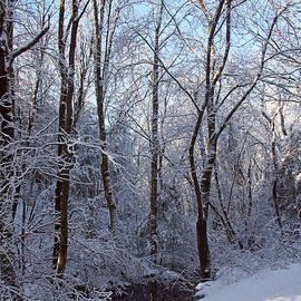 Deborah  Bowie - After the Blizzard