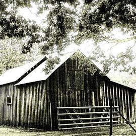 Nina Fosdick - Afternoon at the barn