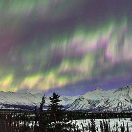 Sam Amato - Alaska Aurora Over the Chugach Mountains
