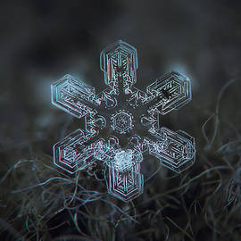 Alexey Kljatov - Snowflake photo - Alioth