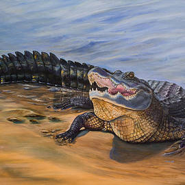 Alligator. Face to face by Zina Stromberg