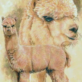 Alpaca by Barbara Keith