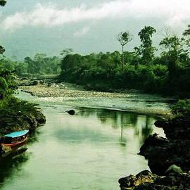 Amazon River Scene by Aidan Moran