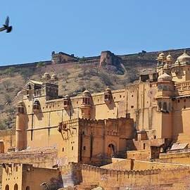 Kim Bemis - Amber Fort View - Jaipur India