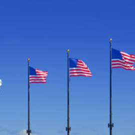 Christine Till - American Flags on Chicago