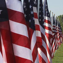 Richard Lynch - American Flags