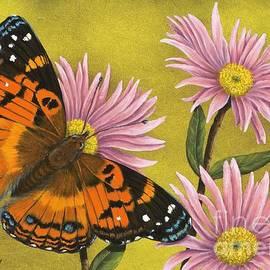 Rick Bainbridge - American Painted Lady