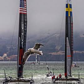 Kate Brown - Americas Cup Oracle Team USA v Artemis Racing