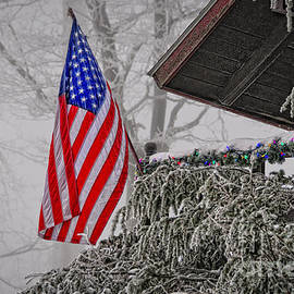 An American Christmas by Lois Bryan