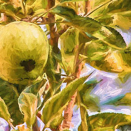 Barry Jones - Still Life - Fruit - An Apple A Day